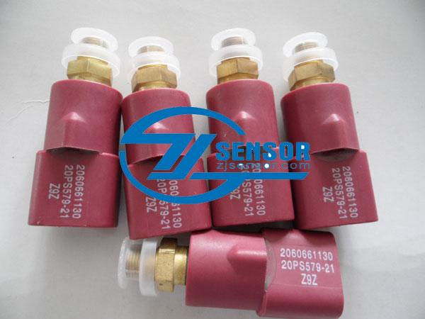 Pressure switch 206-06-61130