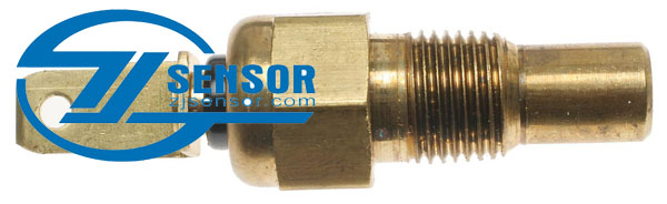 D1858D Professional Engine Coolant Temperature Sensor