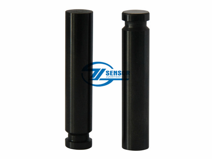 Factory Outlet Plunger for CAT 320D injector pump (1pcs)